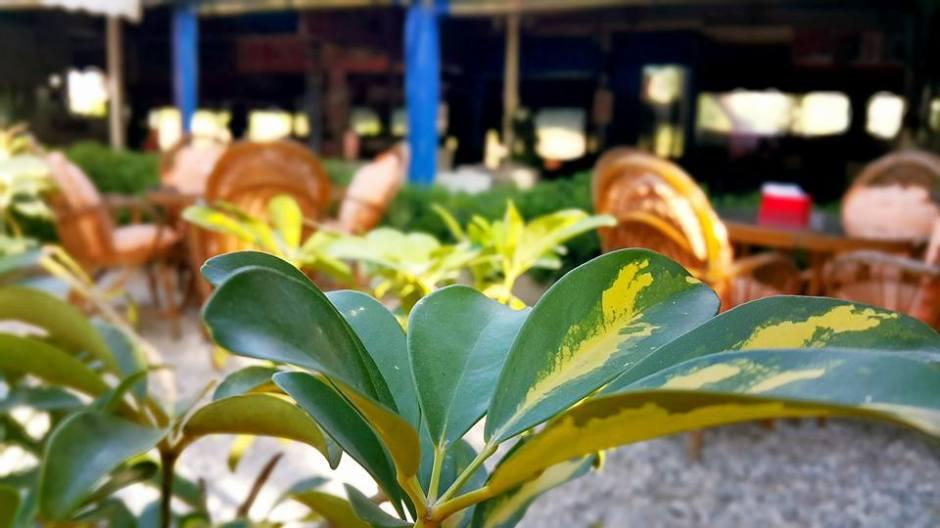 Kaya Kafe Aile Çaybahçesi Manavgat (5)