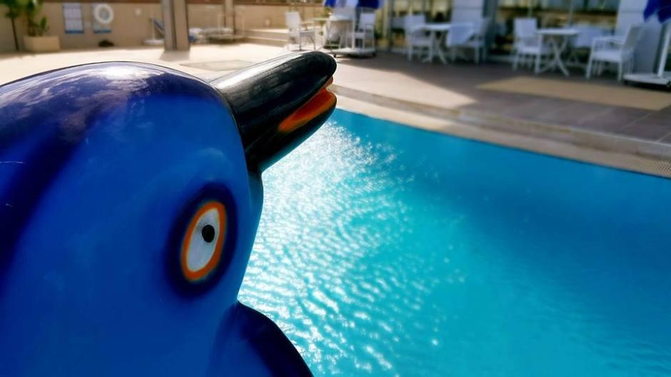 Antalya Blue Garden Hotel - 0242 2288900 antalya konyaaltı oteller denize sıfır otel antalya hotels (17)