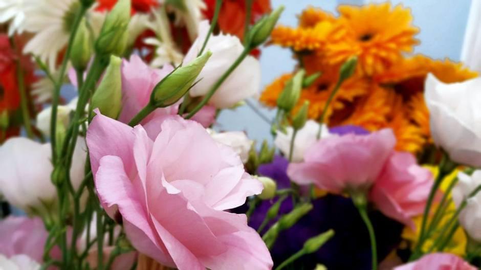 Antalya Çiçek Gönder - 0538 9692901 Gülşen Çiçek Evi (22)