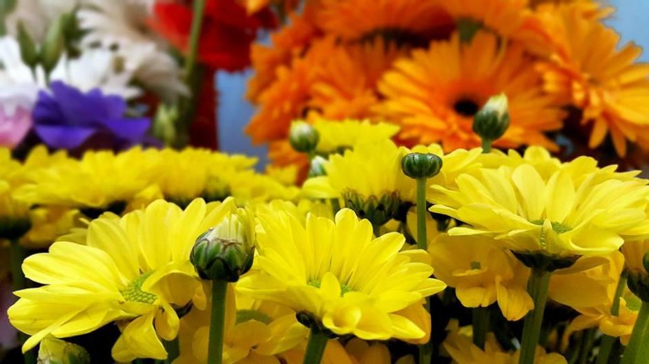 Antalya Çiçek Sipariş - 0538 9692901 Gülşen Çiçek Evi (41)