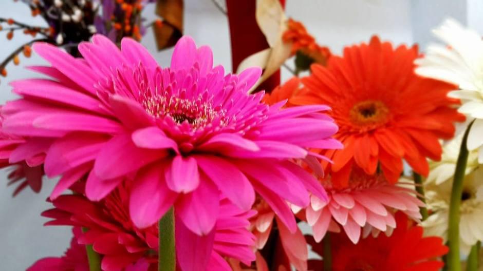 Antalya Çiçek Sipariş - 0538 9692901 Gülşen Çiçek Evi (43)