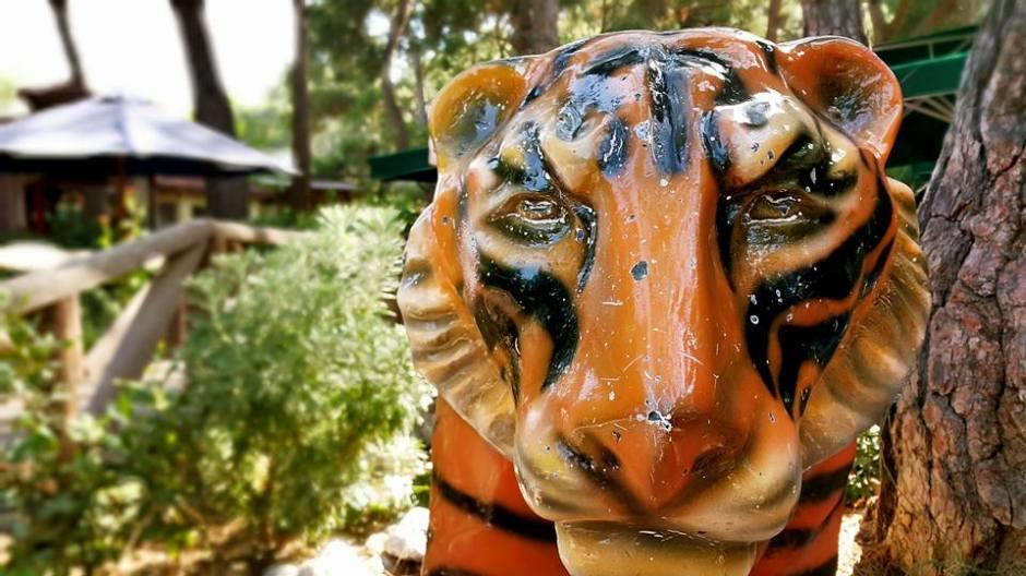 Antalya Köy Kahvaltısı - 0242 4394747 - Çakırlar Gzöleme Bazlama Paşa Kır Bahçesi Çakirlar (18)