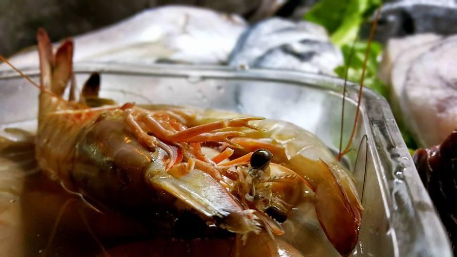 Ekici Restaurant - 0242 2484142 antalya kaleiçi yat limanı mekanlar restaurant bar balık evi (22)
