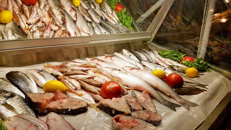 İzmir urla restoran 02327552056 urla en iyi restoran balık restoranı (13)
