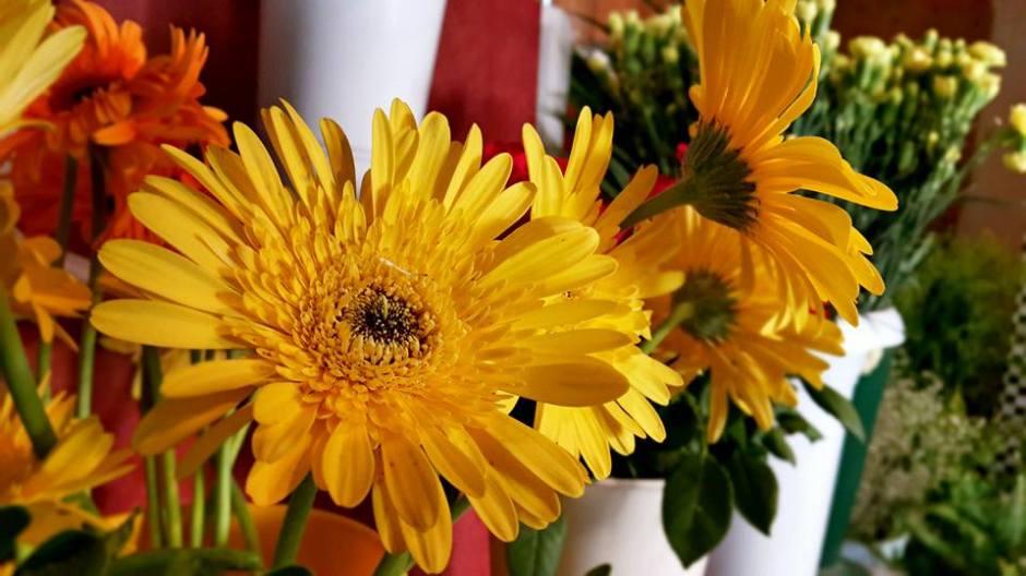 antalya çiçek sipariş 0242 3453210 çiçek gönderme orgil çiçekçilik (13)